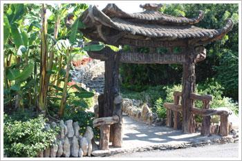 Chinese Tea Garden