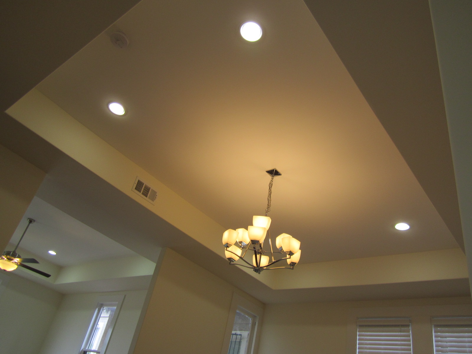 Houzz Master Bedroom Tray Ceiling